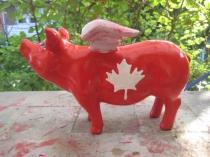 Canada-Sparschwein