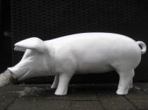 Sparschwein Rohling Ferkel