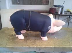 Sparschwein für den Judo-Verein_2