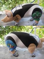 Sparschwein Triatlon