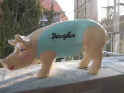Douglas- Sparschwein_1