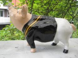 Sparschwein für eine Studentenverbindung_2